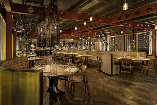 Manchester house and el gato negro star at national